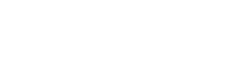 bauerle-and-company.png
